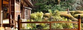 japanese garden for blog post
